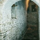 Lower crypt Duomo Trani 19840404 0021 by Fred Mitchell