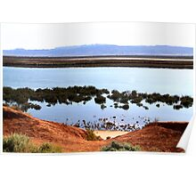 AALBG - Red Cliffs Poster