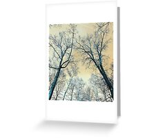 Trees Infrared Nature Greeting Card