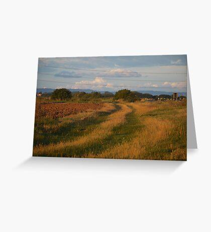 Tracks across Romney Marsh at dawn Greeting Card
