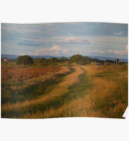 Tracks across Romney Marsh at dawn Poster