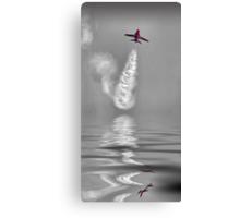 Skyrocket !! Canvas Print