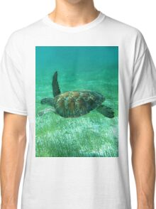 Green Turtle Swimming In The Tropical Caribbean Ocean. Classic T-Shirt