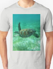 Green Turtle Swimming In The Tropical Caribbean Ocean. T-Shirt