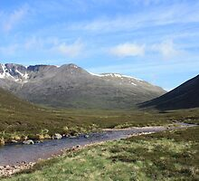Morning in the Cairngorms by SeanHowell