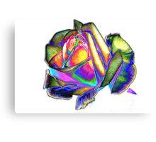 Splendiferous rose Canvas Print