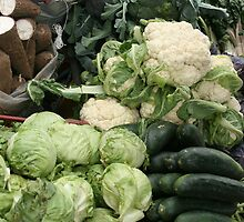 Yucca Cucumbers Lettuce and Cauliflower by rhamm