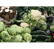 Yucca Cucumbers Lettuce and Cauliflower Photographic Print