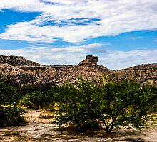 The View From My Car In Arizona 1 by Rebecca Dru