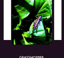 Purple Grasshopper by ItsAnOddWorld