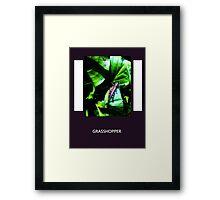Purple Grasshopper Framed Print