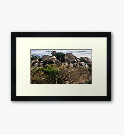 The View From My Car In Arizona 2 Framed Print