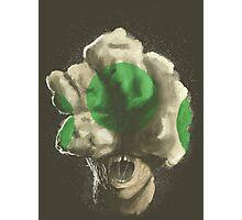 Mushroom Kingdom clicker [Green] - Mario / The Last of Us Photographic Print