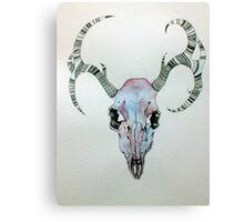 Stag Head  Canvas Print