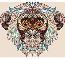 Monkey Ethnic Animals Photographic Print