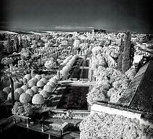 Alcázar de los Reyes Cristianos, Córdoba, Spain, 1328 - infrared photography by Wendy  Rauw