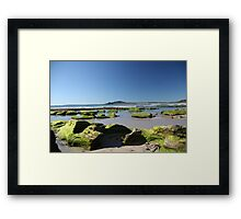 A Touch of Green.  Framed Print