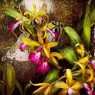 Flower - Orchid - Cattleya - There's something about orchids  by Mike  Savad