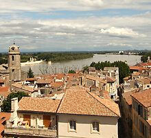 Arles on the Rhone - Provence by Mandy Gwan