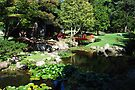 Japanese Garden by John Schneider