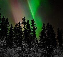 An Evening of Cosmic Lights by peaceofthenorth