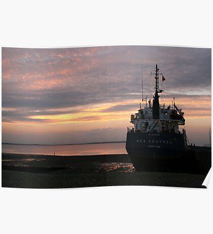 The Sea Kestrel Poster