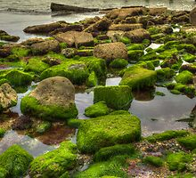 Pink and Green Seaside by manateevoyager