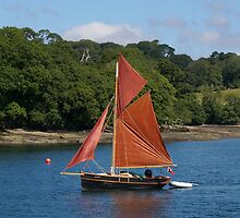Red Sails by Neville Hawkins