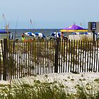 Gulf Shores, Alabama by Mike Pesseackey (crimsontideguy)