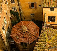 Siena roofs by borjoz