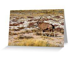 Oryx Greeting Card