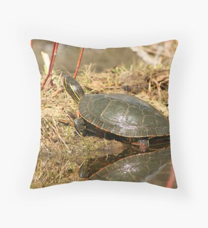 Painted Turtle Sunning Itself Throw Pillow