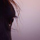 Dawn Eye by Penny Kittel