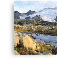 Mt Baker Washington State Canvas Print