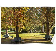 Autumn Benches  Poster