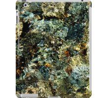 Yosetmite National Park iPad Case/Skin