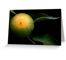 A Tangerine Grows Greeting Card