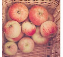 Basketful of Apples  Photographic Print