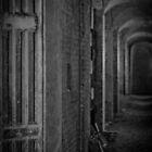 Passage to Beyond by Richard Pitman