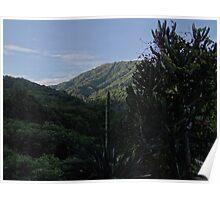 sierra madre, puerto vallarta  Poster