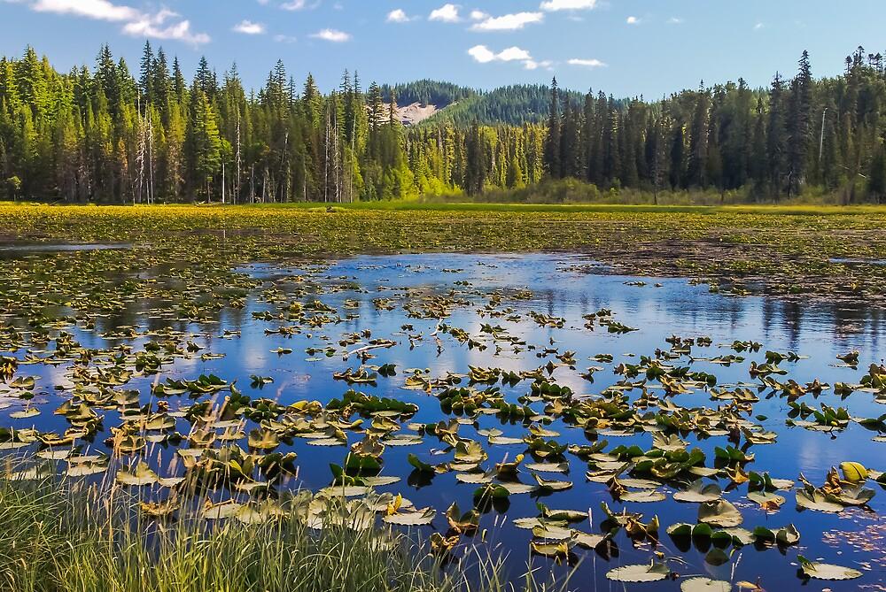 South Prairie Lake, Skamania County, Washington by Steve G. Bisig