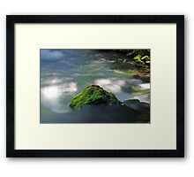 Mossy Rock in Big Spring Framed Print