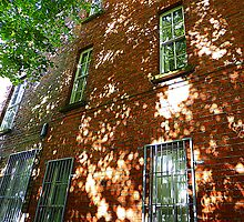 Dappled Sunlight On Brick by Fara