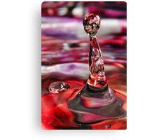 Water Drop I Canvas Print