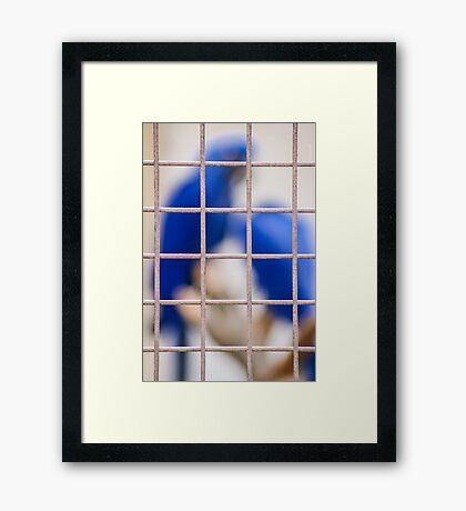 Encaged Framed Print
