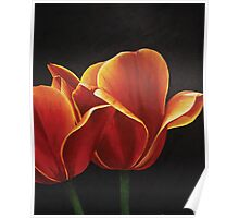 Tulips part two Poster