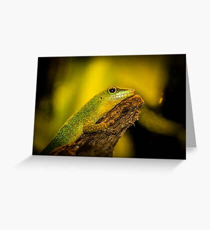 Reptile Greeting Card