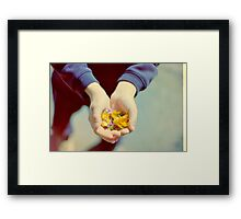 Summer Offerings Framed Print