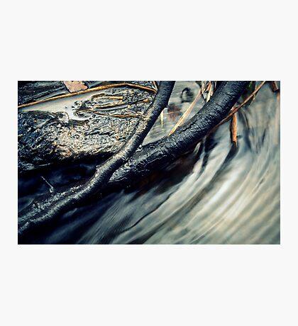 The Creek #11 Photographic Print
