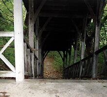 Danvers Asylum: Foot Bridge by Kerri  Crau